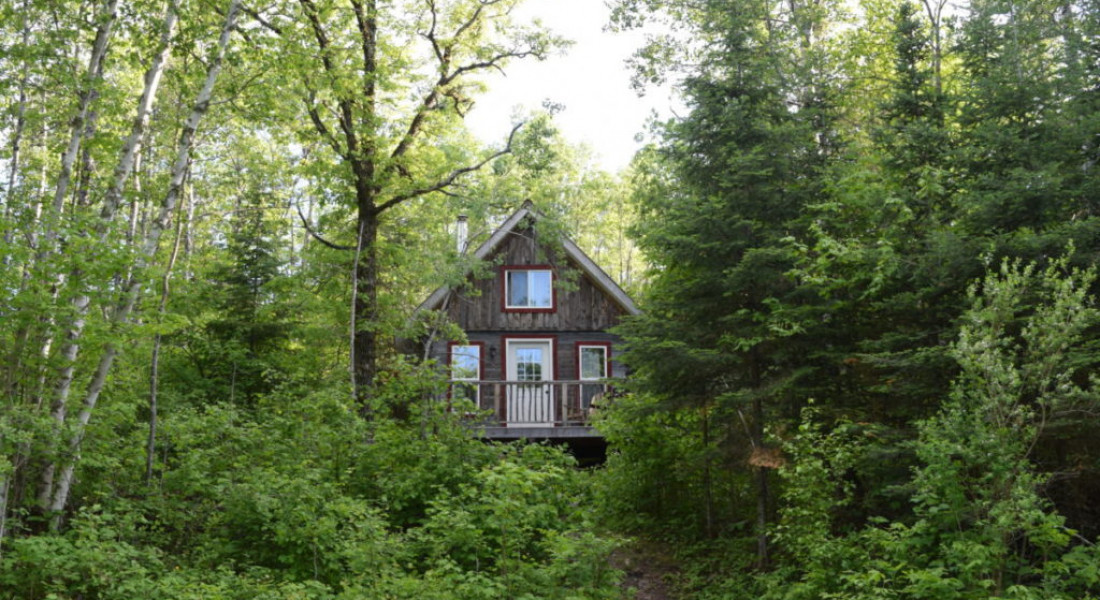 Cabin Exterior Nettle